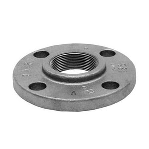 1 in. Flanged x FNPT 125# Galvanized Cast Iron Threaded Companion Flange IGCICFG at Pollardwater