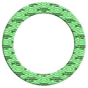 16 x 1/16 in. 300# Stainless Steel Ring Gasket N300RG11616