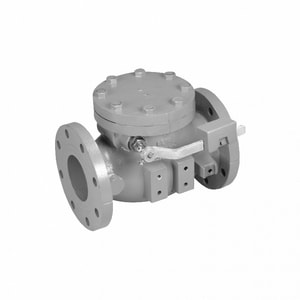 Mueller Company A-2600 Series 4 in. Cast Iron Flanged Check Valve MA26026B1LW