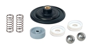 LMI LMI Spare Part Kit Assembly for Liquid End UAA75185PBX and UBP2186PB Pumps LSP86PB at Pollardwater
