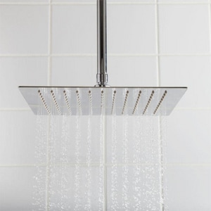 Signature Hardware Beveled Single-function Rain Showerhead in Polished Chrome SH347384