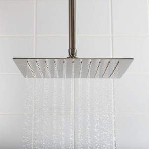 Signature Hardware Beveled Single-function Rain Showerhead in Brushed Nickel SH347477