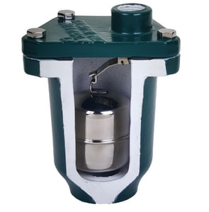 Crispin-Multiplex PL Series 2 in. NPT Cast Iron 300 psig Air Release Valve CPL10A