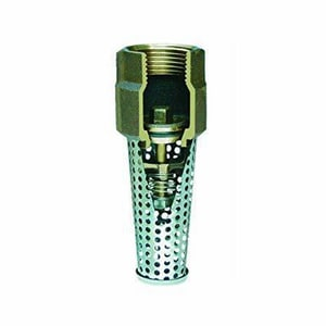 1 in. Silicon Bronze and Stainless Steel Female Threaded Foot Valve SI453SB