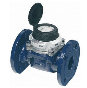 Master Meter 2 x 2 in. Turbine Water Meter MT31A1A050111A1