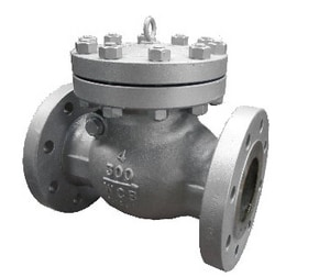 Neway Valve S Series 6 in. Carbon Steel Flanged Swing Check Valve NS3RA8U