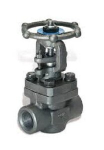 DSI® 3/4 in. Forged Steel Standard Port Male Couplet x Female Threaded Gate Valve D4193A818F