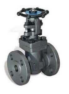 Zy-Tech Global Industries 1/2 in. Forged Steel Standard Port Flanged Gate Valve D2131A818D