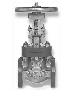 Pacific Valves 3655 1 in. Carbon Steel Threaded Gate Valve P3655HF8624G