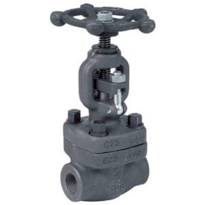1 in. Forged Steel Socket Weld Globe Valve C11GSFJG
