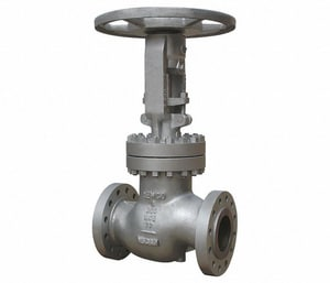 Newco Valves 2 in. Carbon Steel Flanged Extension Globe Valve N26FCB2