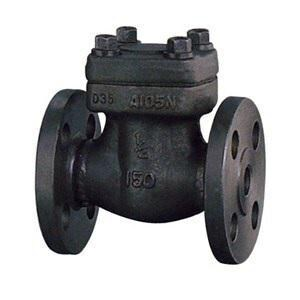 Forum Energy Technologies DSI® 3/4 in. Forged Steel Flanged Check Valve D2431A818F