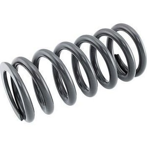 LMI LMI Stainless Steel Spring for LE-20PBA Chemical Pump L25558 at Pollardwater