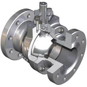 WKM 310 Series 3 x 2 in. 316 Stainless Steel Reduced Port Flanged 300# Ball Valve WB120S842S2WRM