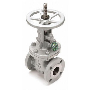 Newco Valves Figure 13F 2 in. Cast Carbon Steel Flanged Gate Valve N13FCB4NACEK