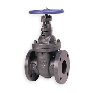 2-1/2 in. Cast Iron Flanged Gate Valve SG623L