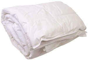Ganesh Mills 105 x 95 in. 52 oz. King Size Duvet Insert in White GWDK52