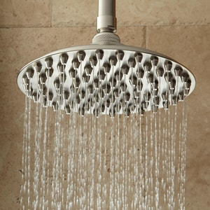 Signature Hardware Bostonian Single Function Rainfall Showerhead in Brushed Nickel SH399520