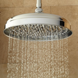 Signature Hardware Lambert Single Function Rainfall Showerhead in Chrome SH400179