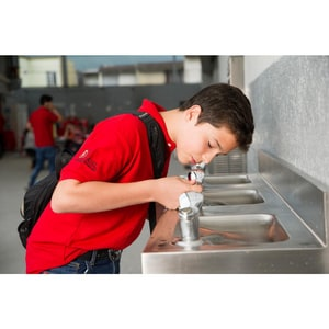 Elkay Legacy Wall Mount Drinking Fountain in Stainless Steel EEDF310C