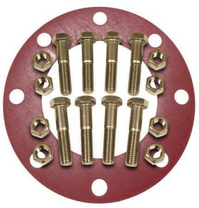 FNW® 4 in. 316 Stainless Steel Red Rubber 1/8 in. Full Face Flange Package FNWNBGS61RF8P