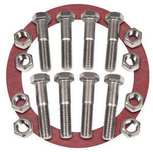 FNW® 2 in. Zinc 150# Red Rubber Ring 1/8 Flange FNWNBGZ1RR8K