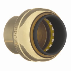 Elkhart Products Corporation Tectite™ 1-1/2 in. Push Brass Tube Cap CTTCAPLFJ