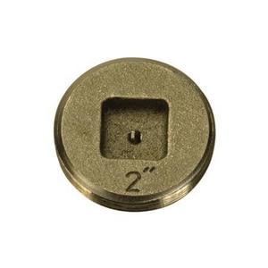 PROFLO® PFEP53 Series 5 in. Countersunk Brass IPT Tap on Pipe Plug PFEP53S