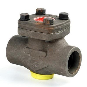 Neway Valve P Series 1-1/2 in. Forged Steel Socket Weld Check Valve NP8SA8