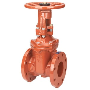 2-1/2 in. Ductile Iron Floor Mount Flanged Outside Stem and Yoke Resilient Wedge Gate Valve NF607RW
