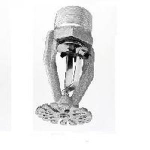 TYCO TY9226 1 in. 165 Degrees F 25.2K Pendent Sprinkler Head Brass T584411165