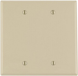 Leviton 2-Gang Blank Thermoplastic Nylon Wall Plate in Ivory LPJ23