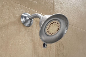 Delta Faucet Touch-Clean® 2.5 gpm Dual Spray Showerhead DRP34355