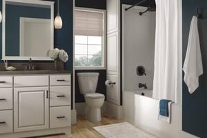 Delta Faucet Addison™ Toilet Tissue Holder D79250