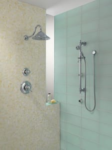 Brizo Baliza® 2 gpm Hand Shower with Slide Bar D85710
