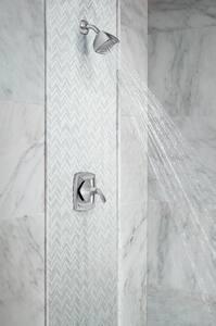 Moen Voss™ Single Lever Handle Shower Only MT2692