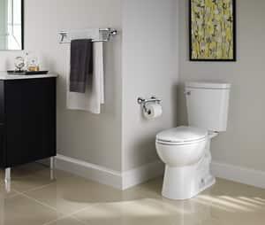 Delta Faucet Decor Assist™ 24 x 2-1/2 in. Transitional Towel Bar with Assist Bar D41419
