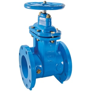 Watts Series 405-NRS-RW Flanged Cast Iron Resilient Wedge Gate Valve W405RW