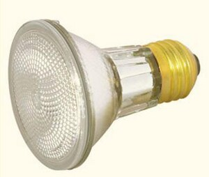 Satco 130 V Narrow Flood Bulb S14529