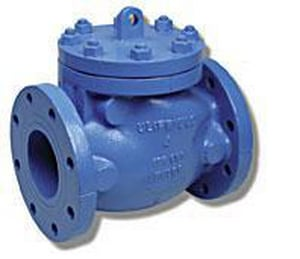 Matco-Norca Cast Iron Floor Mount Flanged Check Valve M120U