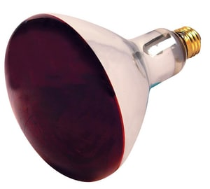 Satco Medium Lamp Bulb in Red SS4998