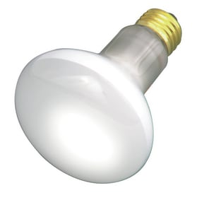 Satco 30W R20 Dimmable Incandescent Light Bulb with Medium Base SS2810