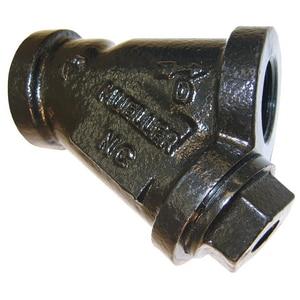 Mueller Steam Specialty Cast Iron 250# Thread 100 Mesh Wye Strainer M11MLSS100