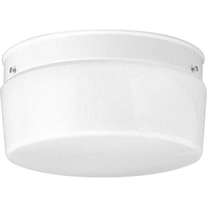 Progress Lighting 5-3/8 in. 75 W 2-Light Steel Medium Flush Mount Close-to-Ceiling Fixture Light PP352030