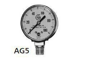 Goulds Pumps 1/4 in. 100 psi Pressure Gauge GAG5