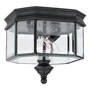 Seagull Lighting Hill Gate 60 W 2-Light Candelabra Semi-Flush Mount Ceiling Fixture S8834