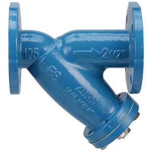Wilkins Regulator 125# Cast Iron Flanged Epoxy Coating Wye Strainer WFSC