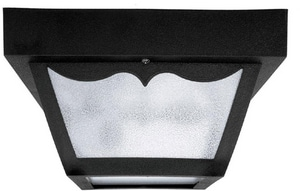 Capital Lighting Fixture 60W 2-Light Flushmount Outdoor Poly Ceiling Fixture C9239