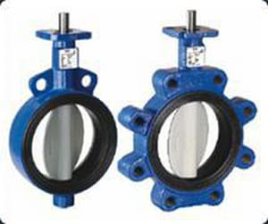 Deltech Controls Cast Iron Wafer Butterfly Valve D500121E1B0