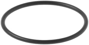 Kohler 1 13/25 in. O-Ring K1025656